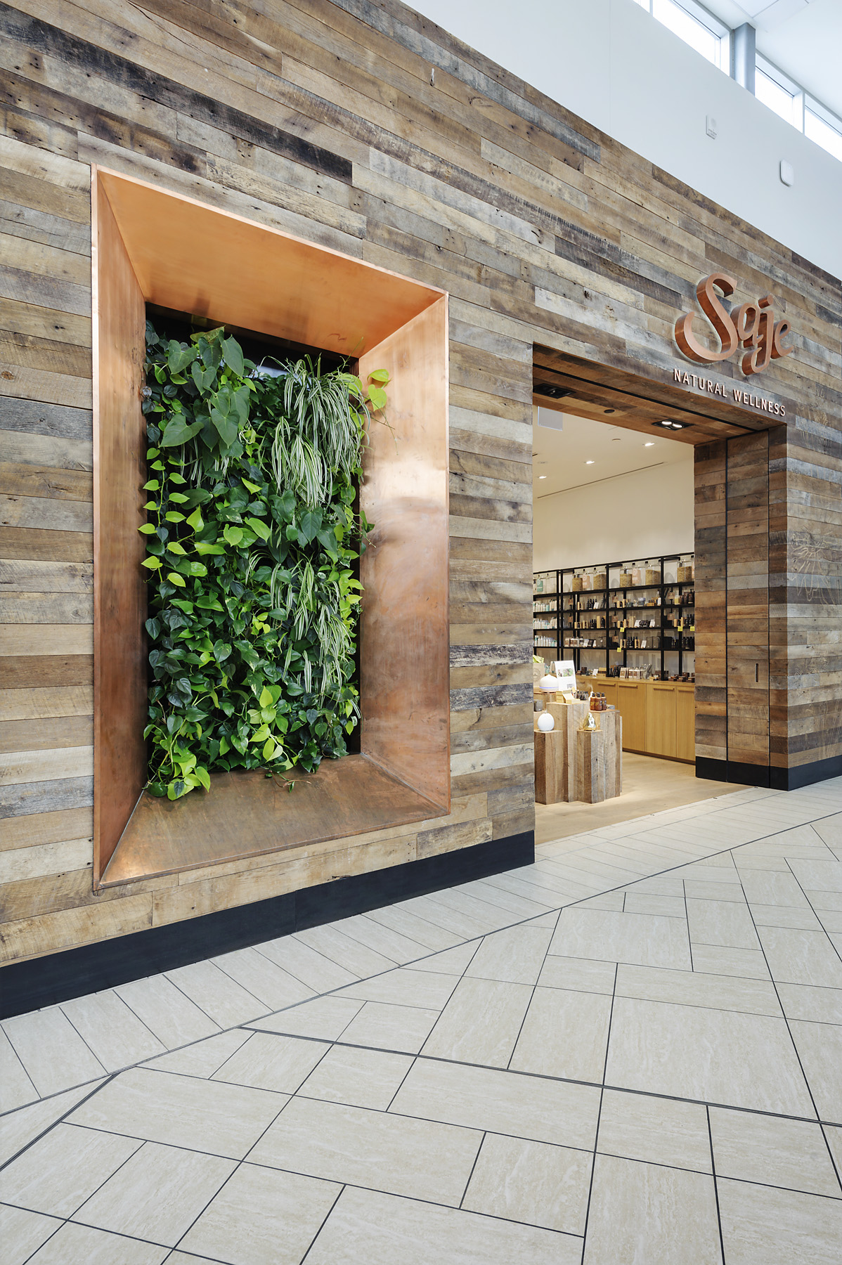 Living Plant Wall by Vertical Oxygen